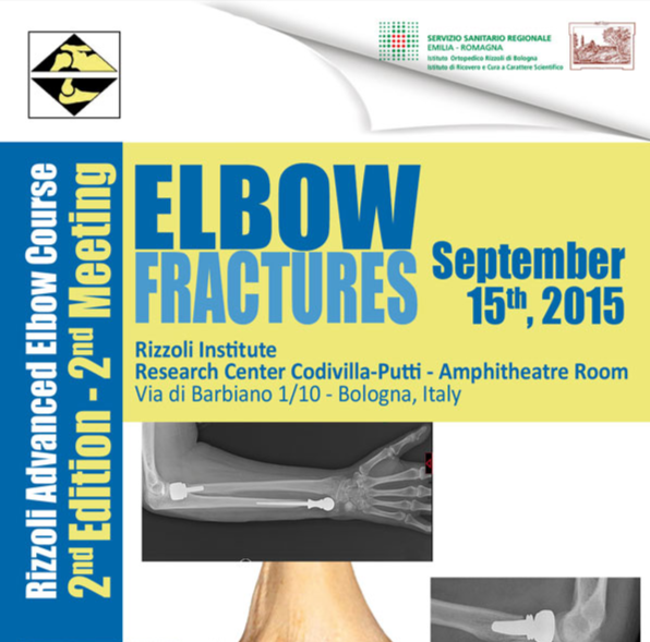 Rizzoli Advanced Elbow Course 2nd Edition 2nd Meeting